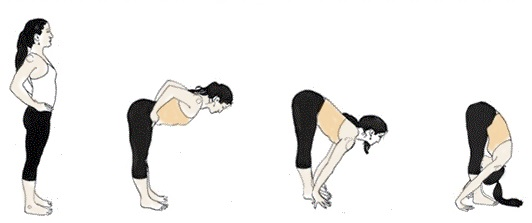 Billedresultat for Forward Bend Pose (Uttanasana)